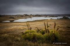 Poolburn Dam, Central Otago (flyingkiwigirl) Tags: dam central ridge lotr valley otago lordoftherings rough ida poolburn