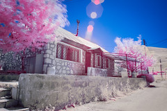 Our Pink Chalet (jrseikaly) Tags: road street pink blue sky lebanon house tree home nature jack photography foliage infrared chalet arz cedars ariz seikaly jrseikaly