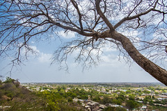 Talaja Town (Ragavendran / Rags) Tags: city tree monument birds rural temple climb town village view belief hills caves jain gujarat jains bhavnagar talaja ragavendran jainisam shritalajateerth