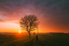 Self-Portrait (19/01/2016) (Adam_Marshall) Tags: sunshine adam marshall portrait landscape sunset nature stereocolours orange clouds sawtry winter outdoors fog sky goldenhour purple field adammarshall mist cambridgeshire countryside tree warm self atmospheric cold vast