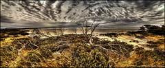 DRY LAKE WIDE (GTV6FLETCH) Tags: panorama canon pano au australia southaustralia sigma1224mm stitched hdr 5dmarkii 5d2 5dmii canoneos5dmark2 siggy1224mm
