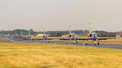 Aero L-39 C Albatros   Baltic Bees (f1_mirage) Tags: bees baltic airshow albatros aero radom l39 rdo epra sadkw