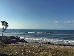 Lungomare di carini (Vito Parisi) Tags: sea summer sun landscape mare estate smartphone albero lungomare paesaggio iphone composizione caldo 6s