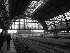 CS (streamer020nl) Tags: holland netherlands station amsterdam gare nederland bahnhof cs paysbas niederlande centraal 2016 250516