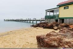 Phillip Island, VIC (Mio Marquez) Tags: travel family australia victoria churchill phillipisland sanremo thenobbies penguinparade koalaconservationcentre pelicanfeeding tropicanamotorinn
