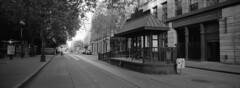 Occidental Park Stop (Orion Alexis) Tags: seattle street city blackandwhite panorama white black film analog 35mm kodak widescreen trix tram 400 fujifilm analogue cinematic xpan tx1
