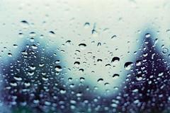 raining day (BillyClack) Tags: fujifilm fuji fujica fujicast701 st701 carlzeiss carlzeissjenaddr50mm18 jena 50mm 18 iso800 xtra fujifilmxtra
