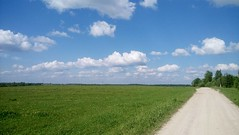 Windows 11 (ellydelynt) Tags: road blue sky green nature field grass yellow skyline clouds landscape outdoor horizon