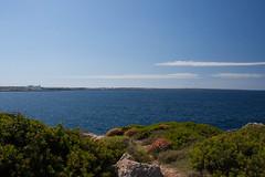 Minorque (23) (Miarno) Tags: mer nature vacances soleil eau sable biosphere espagne plage menorca balares minorque