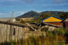Roofs (Tatters ) Tags: house village russia sakhalin   tikhaya oloneo 2012