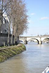 Pont Marie (carolyngifford) Tags: bridge paris riverseine