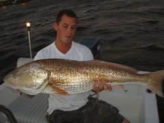 pics 2008-2011 360 (rachelhoch) Tags: redfish pics20082011