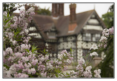The Flower Frame (Audrey A Jackson) Tags: flowers house colour history architecture depthoffield wolverhampton wightwickmanor canon60d 1001nightsmagiccity manderfamily