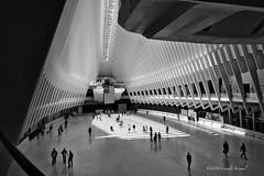 A Temple of Transportation (CVerwaal) Tags: nyc blackandwhite usa ny newyork architecture batteryparkcity santiagocalatrava sonyrx100iii
