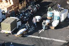 IMG_5905 (tsaaby) Tags: japan fishmarket fisk fiskemarked tmfstudietur