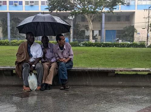 #raining #chuva #solidariedade #togheter #ruas #salvador #bahia #brasil  #igersbahia #salvadormeuamor #igerssalvador_oficial #salvadormania #ssalovers #lumia930 #brasillaforah #brstreet #bahiameuencanto #baianidadenagô_ #ig_bahia #travelling_couple #fotos