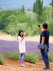 photographers (Wilma van Oorschot) Tags: flowers people photographer outdoor lavender gordes selfie 75mm angelphotography olympusomde5 olympusmzuiko75mmf18 wilmavanoorschot olumpusomdem5
