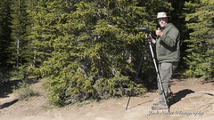 Art at Peyto Lake LR (Jack Nevitt) Tags: lake canada photographer banff peyto