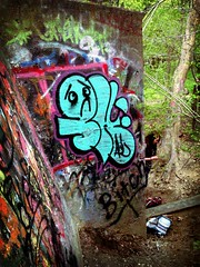 Skyler (ayeelel46) Tags: chicago graffiti all character skyler throwy flickrandroidapp:filter=tokyo