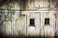 Rural Windows (sminky_pinky100 (In and Out)) Tags: windows canada barn rural wooden doors novascotia fineart country rustic rusty textures ruraldecay omot cans2s glamourglow creepingfoliage
