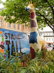 142/365 Stand Tall (The original SimonB) Tags: promotion project suffolk model may samsung giraffe 365 ipswich colchesterzoo 2013 wb150