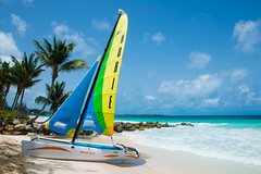 Barbados Hobie Cat (@shpayne) Tags: sea beach boat rocks turtle barbados caribbean coconuts dover hobie bluesea