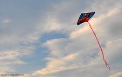 166/365: 06/15/2013.  The Kite Flyer!! (peddhapati) Tags: kite classic flying interesting kites flyingkite funstuff kiterunner kiteflyer nikond90 colorinthesky day166365 nikon18105mm 3652013 2013yip 365the2013edition bhaskarpeddhapati 06152013 carskite