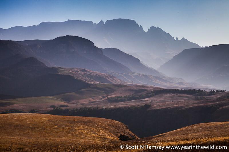 uKhahlamba-Drakensberg - copyright Scott Ramsay - www.yearinthewild.com-7