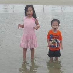 Loud as the Ocean 0804 (mliu92) Tags: beach toddler daughter lajolla shores figgy calcifer