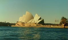 Opera House Sydney (walterino1962) Tags: alberi teatro mare case ombre erba luci operahouse piante riflessi gabbiani ancona palazzi ostra pontile baia scalini arbusti asteconbandiere persone