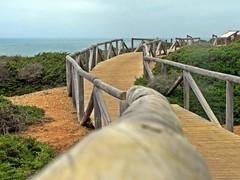 Camino (PujaEspe) Tags: verde madera camino cielo campo cdiz tablas ocano