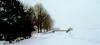 winter in holland (12) (bertknot) Tags: winter winterinholland denbommel