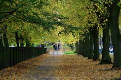 Errwood Road (kh1234567890) Tags: manchester pentax burnage k7 smcpentaxm135mmf35 smcpm135mmf35