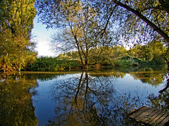 Fishing Peg (Rob Felton) Tags: light sun reflection river bedford dawn bedfordshire felton willington robertfelton thegreatouse fishingpeg bedfordrivervalleypark