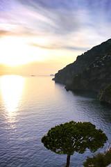 A maritime pine enjoys the sunset in Positano (De Mi Ser) Tags: sunset sea sun pine seaside tramonto mare amalficoast positano sole pino ocaso amalfi puestadelsol