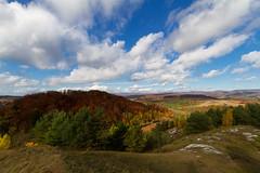 Autumn in the Southern Harz (Foto-Wandern.com) Tags: vacation holiday tourism hiking urlaub recreation relaxation nordhausen wandern harz tourismus erholung südharz karstwanderweg wandernadel fotowandern sattelköpfe