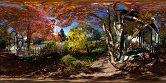 Fall Colors, Ukiah (Explore)