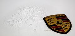 pic14 Porsche beeds