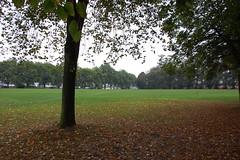Coventry: Spencer Park (pix4cov) Tags: coventry spencerpark covpix pix4cov