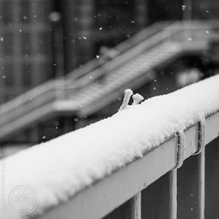Further (SandoCap) Tags: winter urban bw snow monochrome japan tokyo s   handrail   mil     canonef50mm118ii japaninbw canoneoskissx3