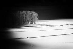 Licht und Schatten (mikiitaly) Tags: italy sdtirol pfitschtal bestcapturesaoi elitegalleryaoi ringexcellence ruby10 ruby5 ruby15