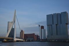 Rotterdam 21-11-2013 (9) (Cor Opperman) Tags: rotterdam erasmusbrug