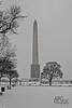 Monument in Snow (APGougePhotography) Tags: bw snow dc washington districtofcolumbia nikon district columbia washingtonmonument onone topaz d600 denoise topazlabs nikond600 perfectbw topazdenoise perfecteffects ononeperfecteffects