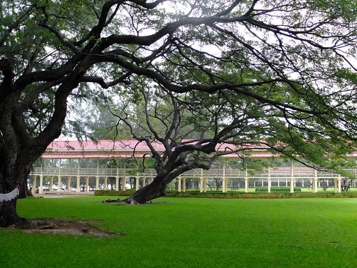 皇宫自豪的是拥有世界上最长的柚木长廊 The Palace prides itself on being the longest golden teak palace in the world.