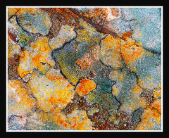 Geographic rock crop (largeheadsmallbrain) Tags: abstract rock sigma lichen dp3