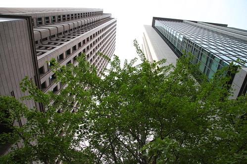 高層ビルの谷間