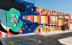 Wynwood Art District, view51, Wynwood, Miami, FL, USA (lumierefl) Tags: usa gallery factory unitedstates florida miami south northamerica fl publicart southeast 20thcentury subtropics wallmural outdoorart wynwood miamidadecounty
