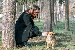 Aki (mikko@gunstudio) Tags: people art dogs nature portraits gunstudio