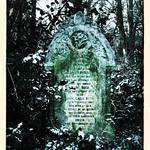 snowy gravestone