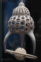 Radiolaria model, Frankfurt Museum (Paul Williams www.IronAmmonitePhotography.com) Tags: stuffed